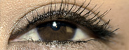 Woman's Eye: Brown