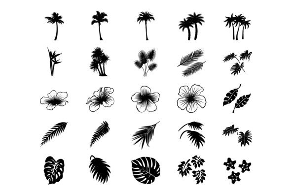 Displaying (20) Gallery Images For Tropical Flowers Drawing...